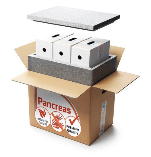 Orange Pancreas